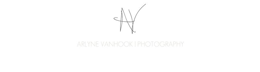 Arlyne VanHook logo